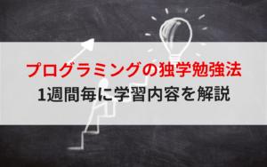 【初心者向け】プログラミングの独学勉強法と1週間ごとのロードマップを解説!